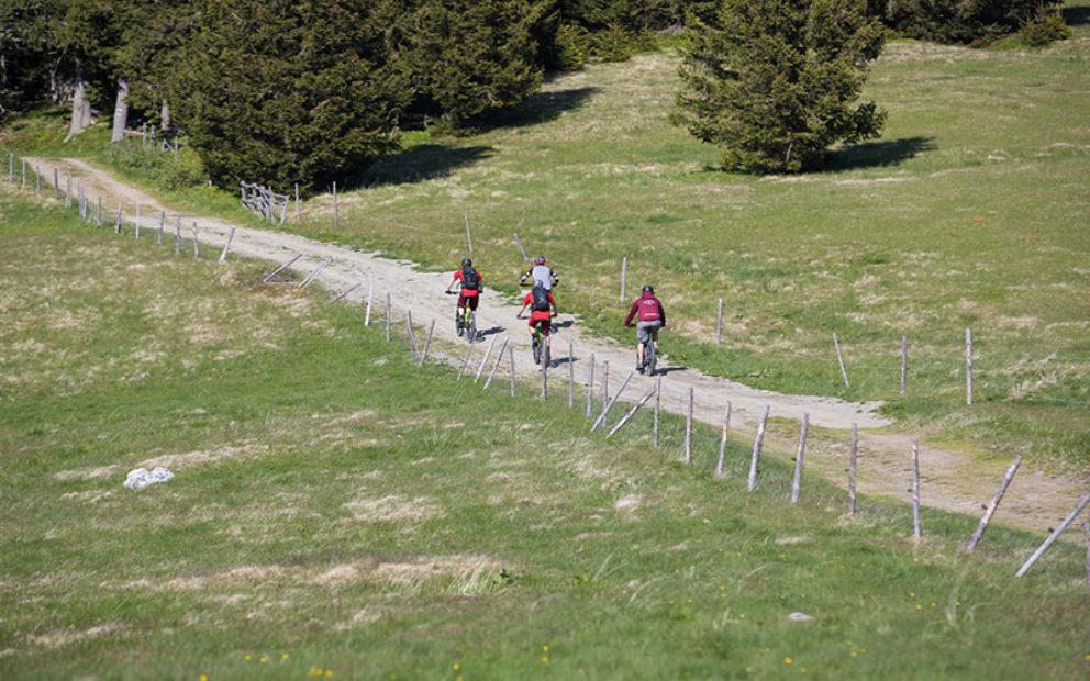 Wexl Trails: Steirische Anbindung in Sicht