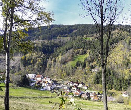 Gemeinde-Besuch: Trattenbach