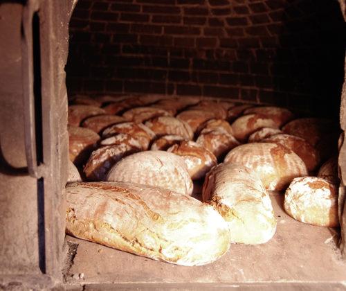 Zu Besuch in einer Brotbackstube