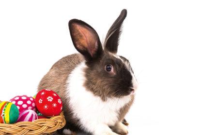 Warum Ostern zu unterschiedlichen Terminen gefeiert wird